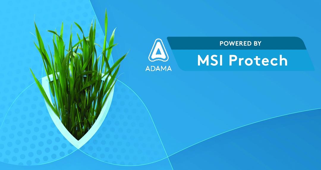 MSI Protech, la formulation innovante à base de folpel contre la septoriose